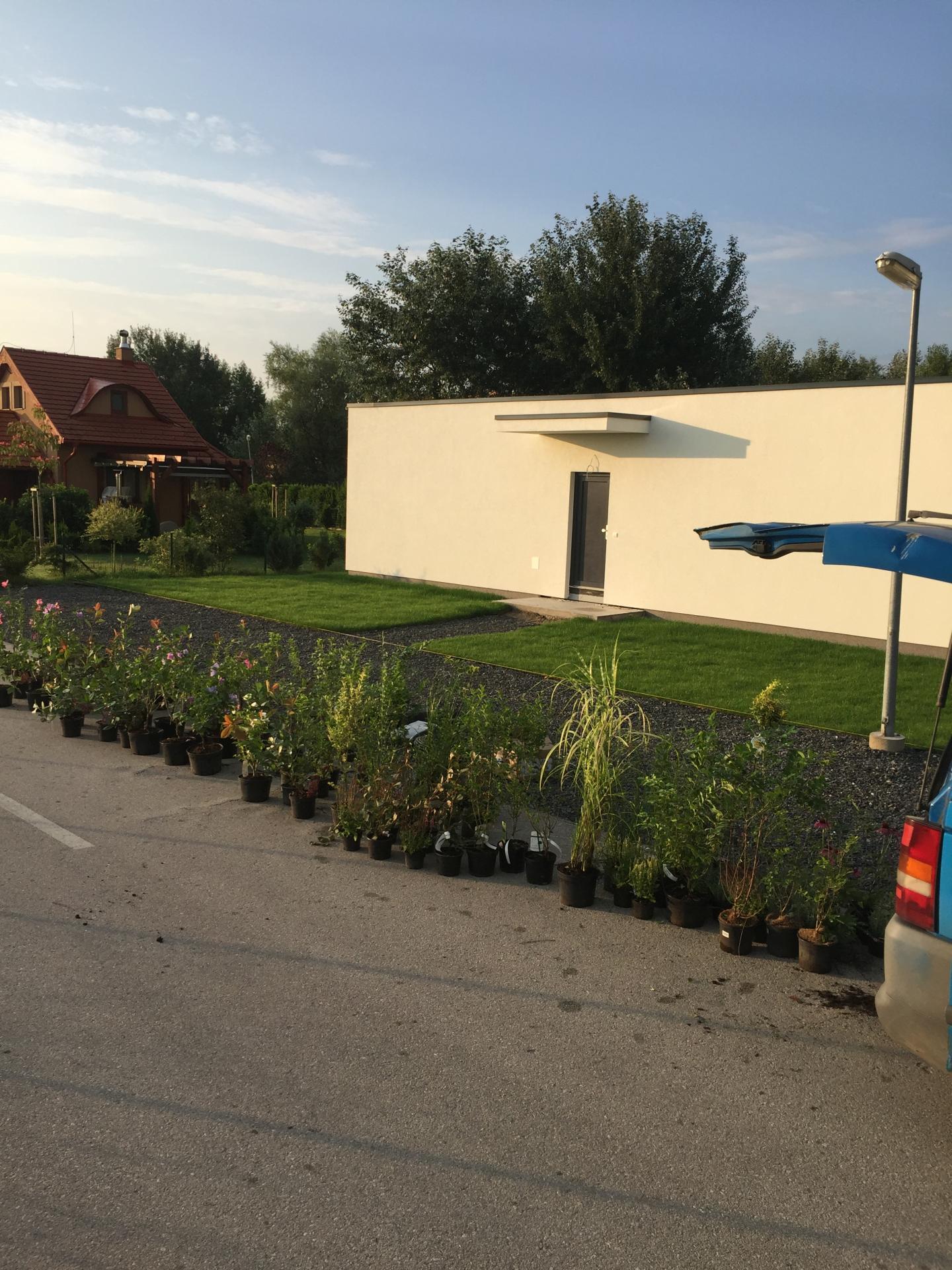 Realizácia záhrad - Rezidencia Vojka - Stellagarden