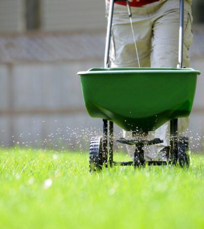 hnojenie-travnika-